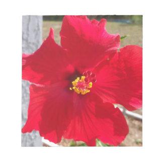 明るく赤い熱帯ハイビスカスの花 ノートパッド
