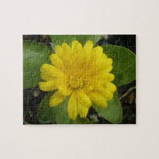 明るく黄色いマリーゴールドのパズル ジグソーパズル