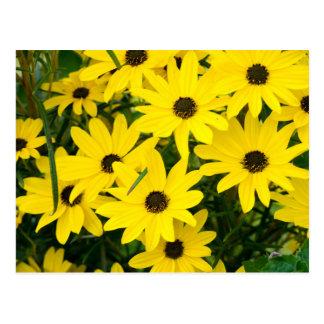 明るく黄色い花 ポストカード