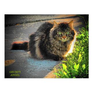 明るく、冷たい子猫猫 ポストカード