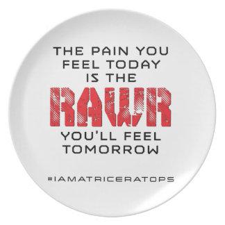 明日今日苦痛- RAWR プレート