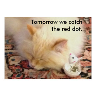 明日私達は赤い点をつかまえます ポスター