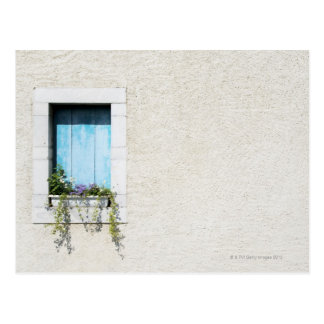 明白な壁の花の窓そして窓ボックス ポストカード