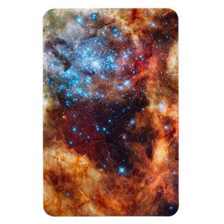 星の子供部屋R136のタランチュラの星雲NASAの写真 マグネット
