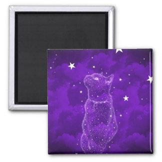 星を眺める猫の磁石 マグネット