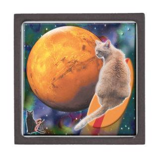 星サーファー猫のチリペッパーのギフト用の箱 ギフトボックス