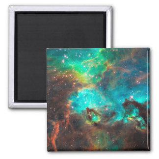 星団NGC 2074年 マグネット