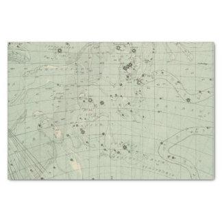 星図2 薄葉紙