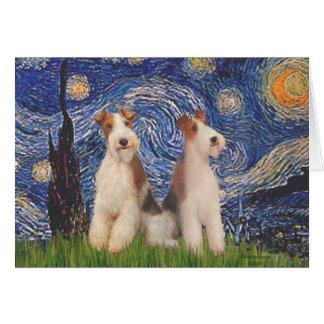 星明かりの夜-二線式のフォックステリア犬 カード