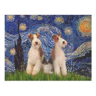 星明かりの夜-二線式のフォックステリア犬 ポストカード