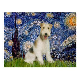 星明かりの夜- (m)ワイヤーフォックステリア犬 ポストカード