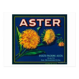 星状体のブランドの柑橘類の木枠のラベル ポストカード