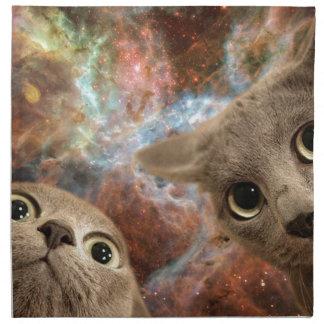 星雲の前の宇宙の2匹の灰色猫 ナプキンクロス