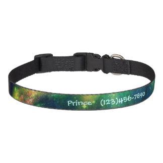 星雲の名前入りなドッグカラーの中では ペット首輪