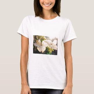春によって合われるティーのシンボルや象徴 Tシャツ
