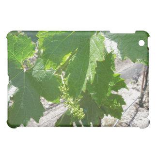 春のつる植物の若い緑のブドウ iPad MINIケース