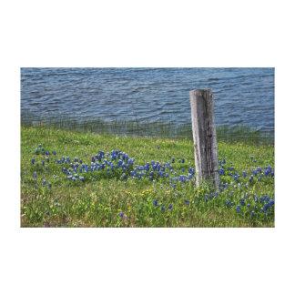 春のキャンバスのプリントの田園テキサス州 キャンバスプリント