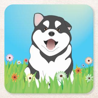 春のシベリアンハスキーの子犬のコースター スクエアペーパーコースター