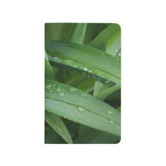 春のシャワーの後のワスレグサの葉 ポケットジャーナル
