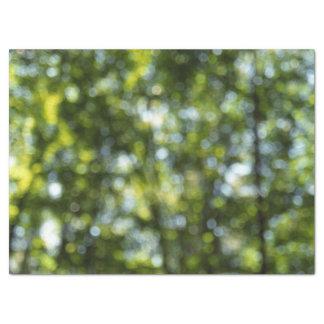 春のティッシュペーパーの抽象的な《写真》ぼけ味 薄葉紙