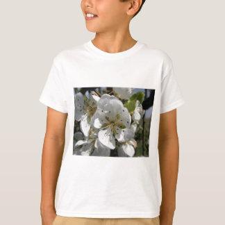 春のナシ木の花。 タスカニー、イタリア Tシャツ