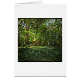 春のビュート公園、カーディフ、ウェールズ カード