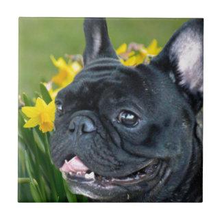 春のフレンチ・ブルドッグ犬の装飾的なタイル タイル