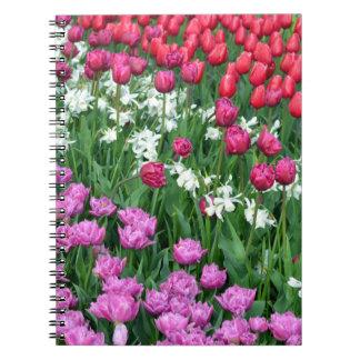 春のラッパスイセンおよびチューリップの庭 ノートブック