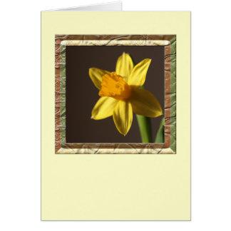 春のラッパスイセン カード