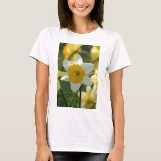 春のラッパスイセン Tシャツ