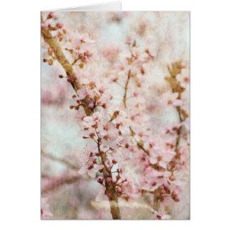 春のロマンスの桜 カード