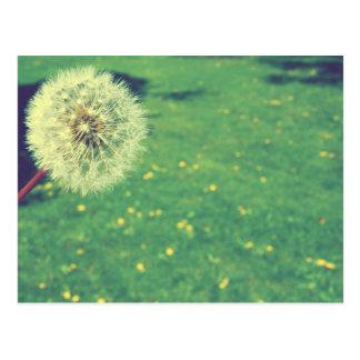 春のヴィンテージの願いの写真撮影 ポストカード