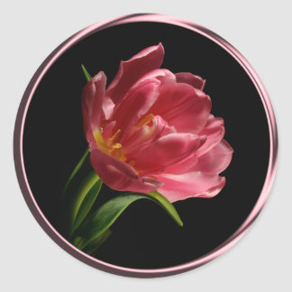 春の倍の開花のチューリップの封筒用シールのステッカー ラウンドシール