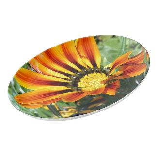 春の印象 磁器大皿