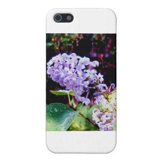 春の庭のライラック iPhone 5 CASE