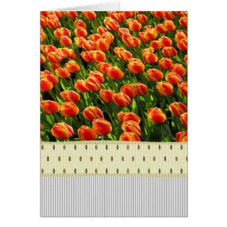 春の庭 カード