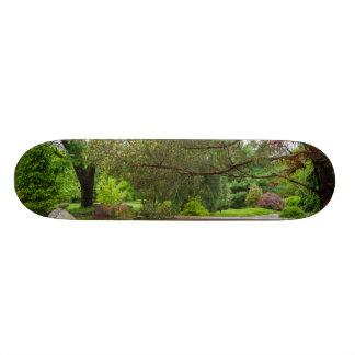 春の散歩 スケートボード