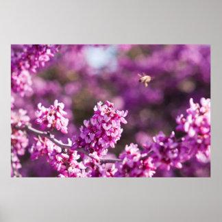 春の桜 ポスター