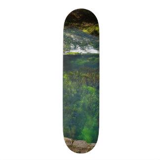 春の深い カスタムスケートボード