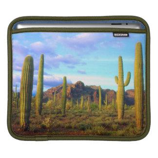春の砂漠 iPadスリーブ