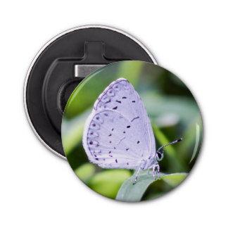 春の紺碧の蝶磁石の栓抜き 栓抜き