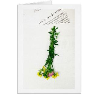春の花および新聞 カード