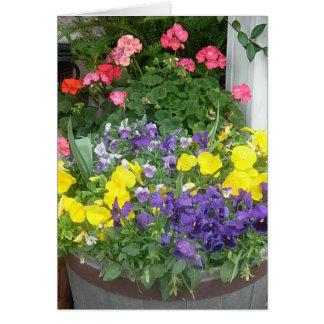 春の花のバレル カード