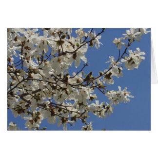 春の花のメッセージカード カード