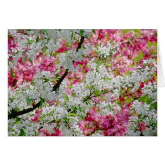 春の花色 グリーティングカード
