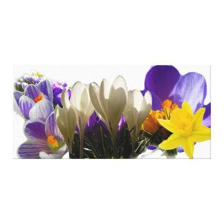 春の花 キャンバスプリント