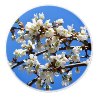 春の花 セラミックノブ