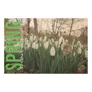 春の花、白いsnowdrops ウッドウォールアート