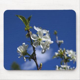 春の芽 マウスパッド