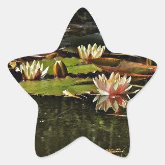 春の開花のピンクのスイレン 星シール